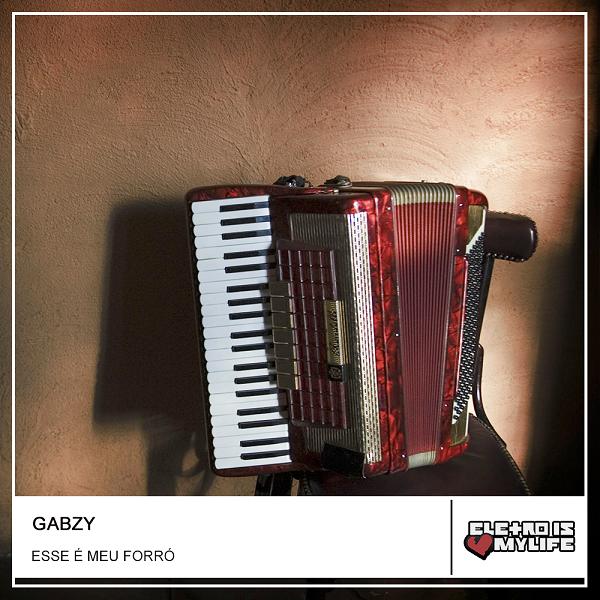 Garotos Bon'd Xote Feat Antony & Gabriel - Esse é Meu Forró (Gabzy Remix)