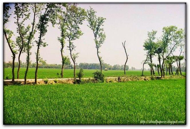nature wallpapers of bangladesh: Background Screensavers: Bangladeshi
