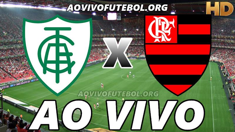 América Mineiro x Flamengo Ao Vivo HD TV PFC