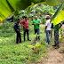 Autoridades de Alcaldía de Caroní visitan a familias que impulsan patios productivos