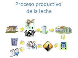 Procesos de producci n alejandra torres for Descripcion del proceso de produccion