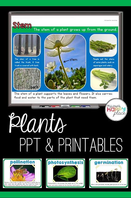 Plants Unit on TPT