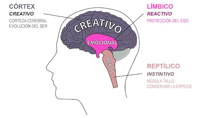 El Neuromarketing y el Marketing Digital
