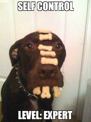 Dog Humor : Total Self Control