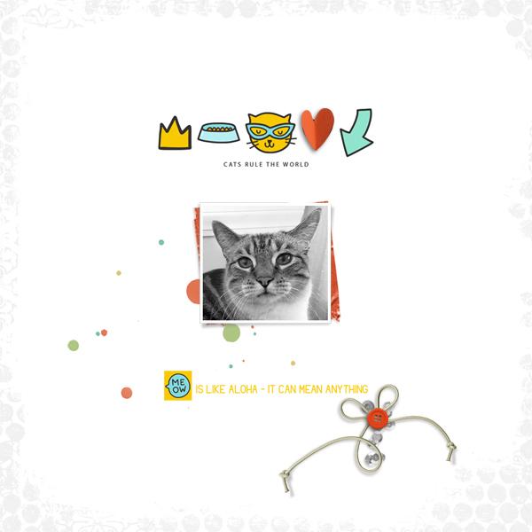 meow © sylvia • sro 2019 • meow & september documented by dunia designs