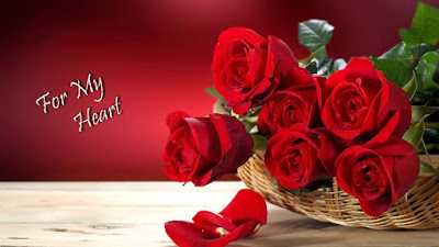 Fresh-Red-Roses-for-my-dilojan-sweet-heart-images.jpeg