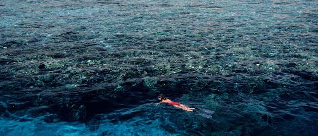 ممارسة رياضة الغوص السطحي في دهب