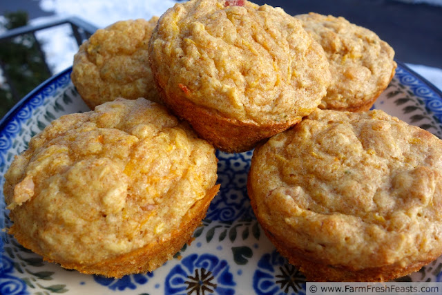 Savory Butternut Squash Soaked Oat Muffins | Farm Fresh Feasts