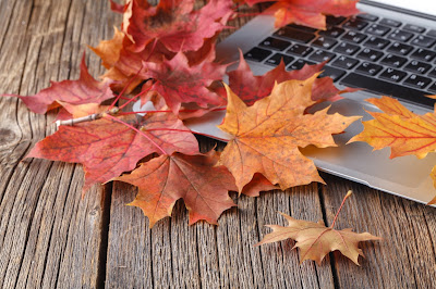 Image of a laptop sitting on a wooden table surrounded by fall leaves.