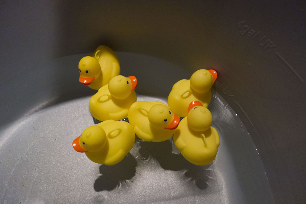 Waltzers, friends and rubber ducks! | Joe Browns Blogger Funfair