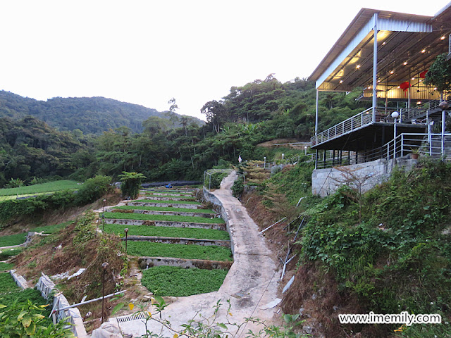 Water Cress Valley Restaurant @ Cameron Highlands