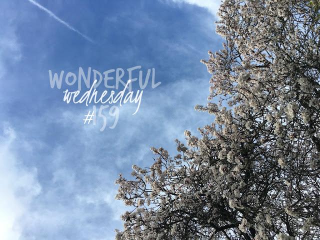 Wonderful Wednesday #159