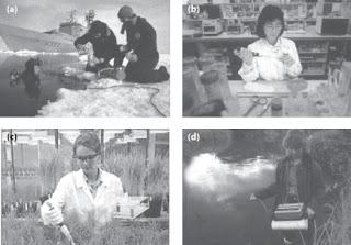 Pengamatan dalam Biologi dapat dilakukan di laut, laboratorium, atau lingkungan sekitar