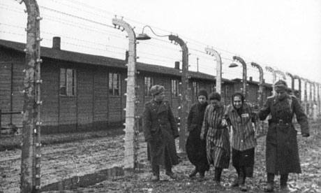 David Irving - Auschwitz Index