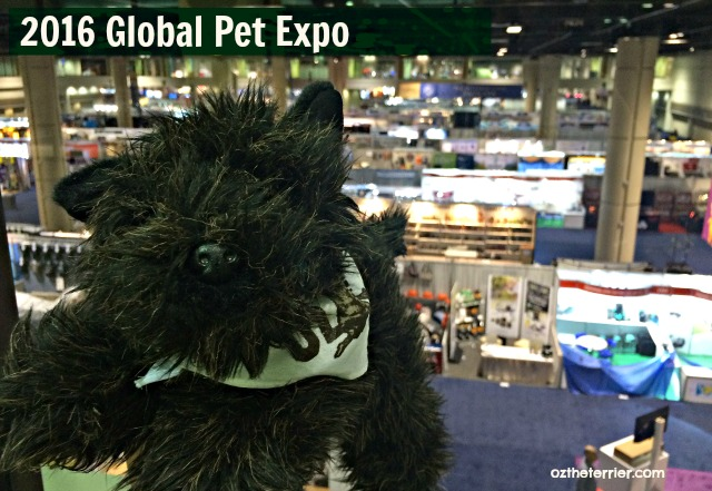 Little Oz at 2016 Global Pet Expo in Orlando, Florida