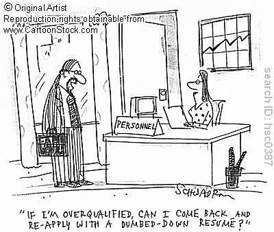 kuihlapisku Stupid Job Requirements - overqualified for the job