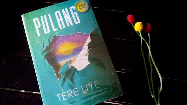 novel pulang tere liye republika