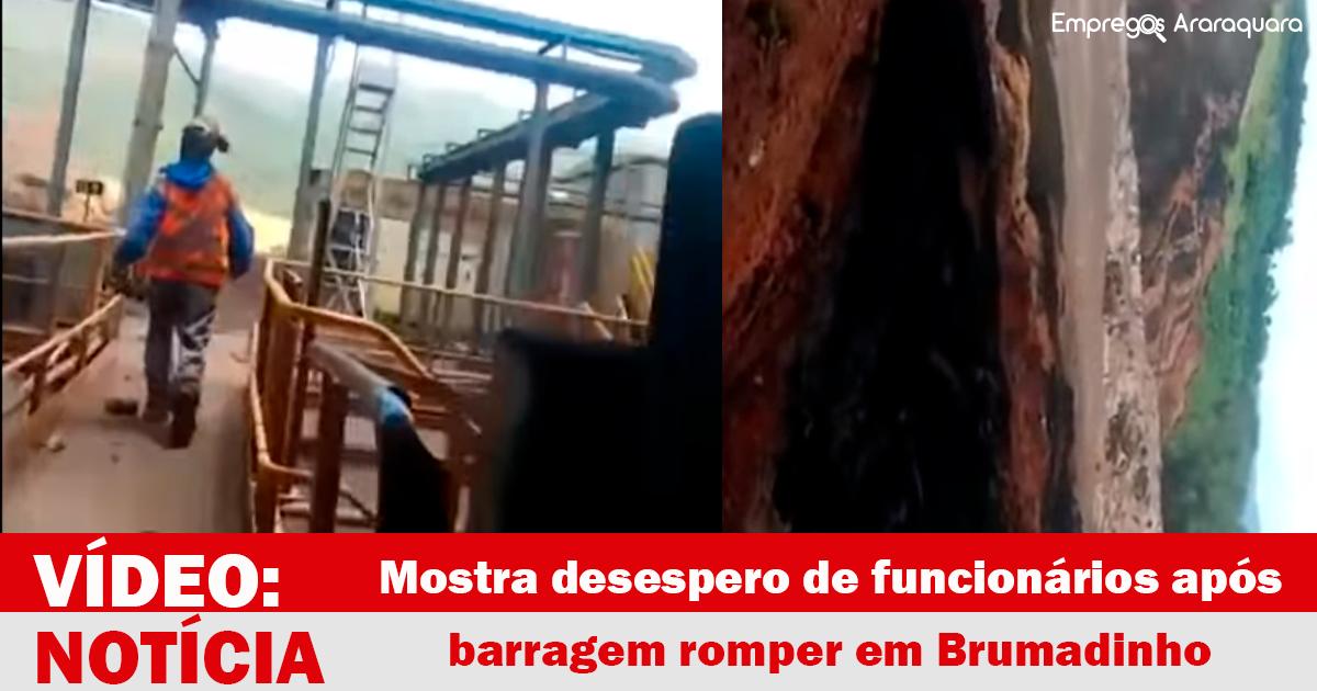 Vídeo mostra desespero de funcionários após barragem romper em Brumadinho