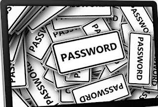 Password captions