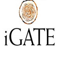 iGATE Global Solutions Limited walk-in for Support - 24-11
