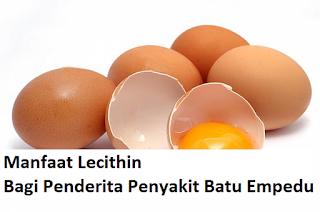 Manfaat Lecithin Untuk Batu Empedu