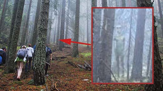 Búlgaros toman foto clara de un alienígena gris gigante