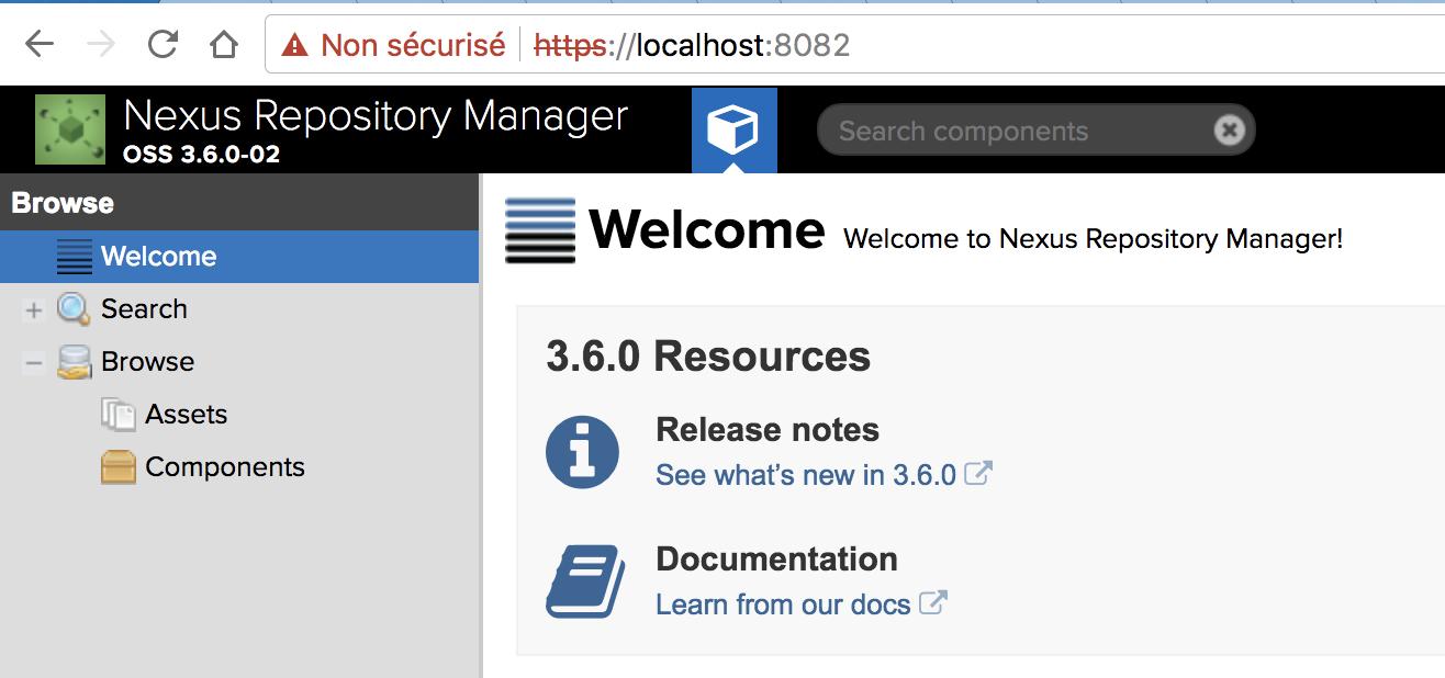 Using a Dockerized Nexus as a Docker Registry