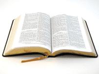 João 1 — Explicação Fácil
