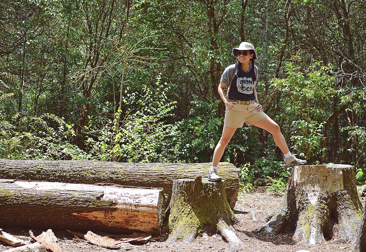 Hiking in Blue Ridge Parkway