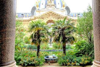 Paris : Le jardin du Petit Palais, les charmes exotiques d'une oasis en ville - VIIIème
