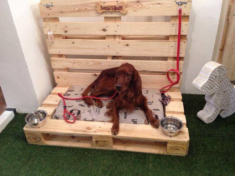 Elle esse recuperare e riciclare i pallet - Letto per cani ikea ...