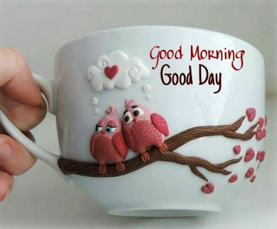 beautiful tea cup with good morning wish for whatsapp