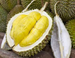 Memilih durian yang matang dan lezat.