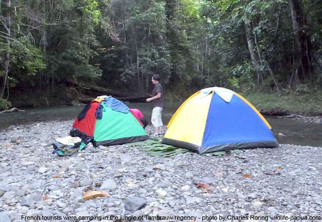 Camping with French tourists in Indonesia's west papua