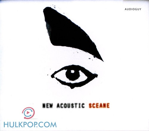 Various Artists – New Acoustic Sceane