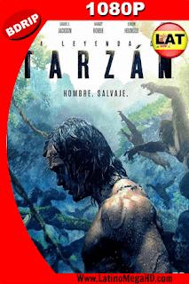La Leyenda de Tarzan (2016) Latino HD BDRIP 1080P - 2016