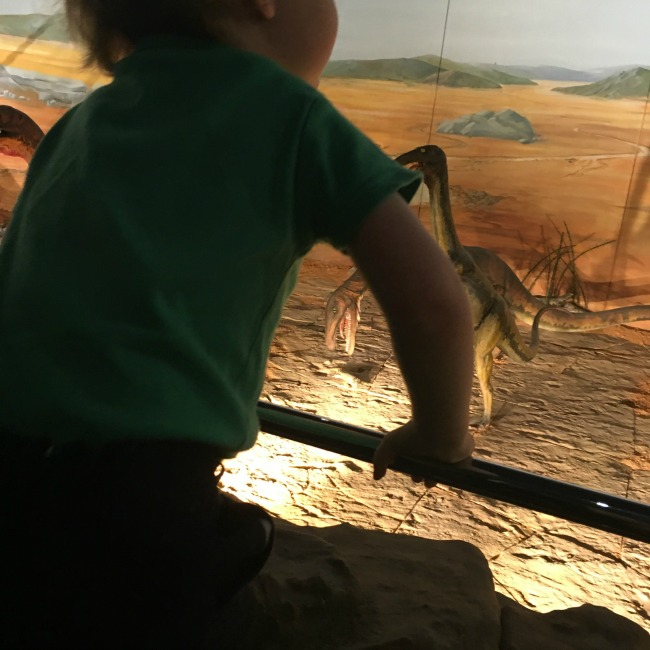 National-Museum-Cardiff-a-toddler-explores-toddler-silhouetted-against-dinosaurs