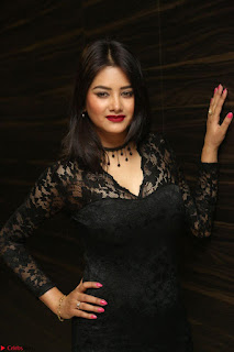 Actress Monica in spicy transparent Black Top at O Pilla Nee Valla Movie Audio Launch Feb 2017 068.JPG