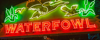 Waterfowl neon sign