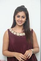 Nikki Galrani in a Brown Shining Sleeveless Gown at Nakshatram music launch ~  Exclusive 056.JPG