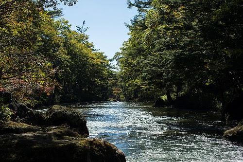 khasiat air sungai maja untuk kalimaya