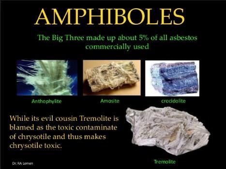 Amphibole And Government Coverups