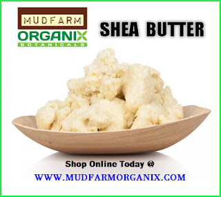 Toronto Shea Butter