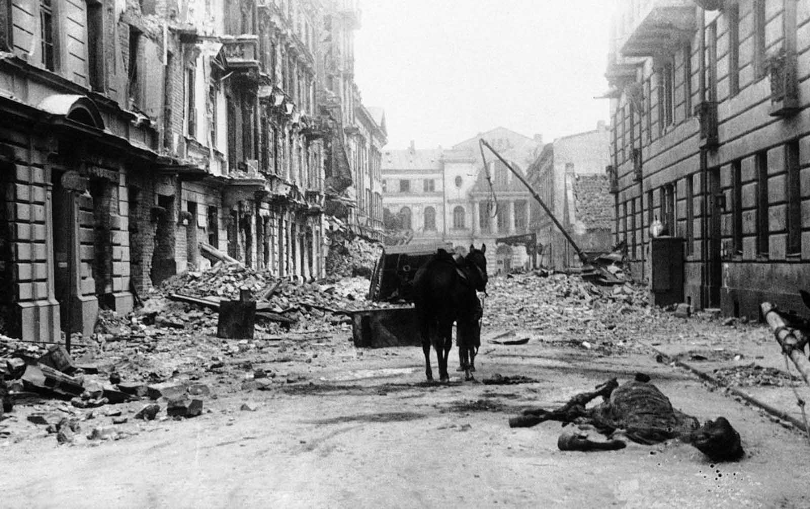 The scene of devastation seen on Ordynacka Street in Warsaw, Poland on March 6, 1940. The carcass of a dead horse lies in the street among enormous piles of debris. While Warsaw was under nearly constant bombardment during the invasion, on one day alone, September 25, 1939, about 1,150 bombing sorties were flown by German aircraft against Warsaw, dropping over 550 tons of high explosive and incendiary bombs on the city.