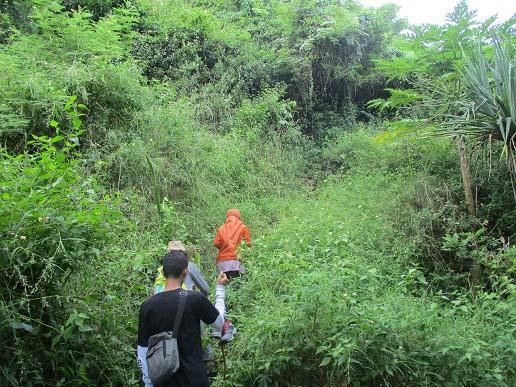 jalan ke pulau kalong