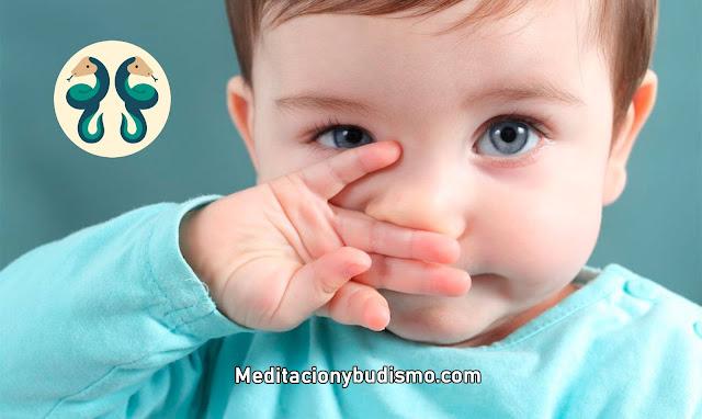 Todo sobre los bebés GÉMINIS
