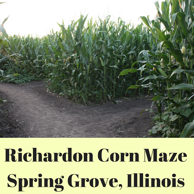 Richardson Corn Maze in Spring Grove, Illinois