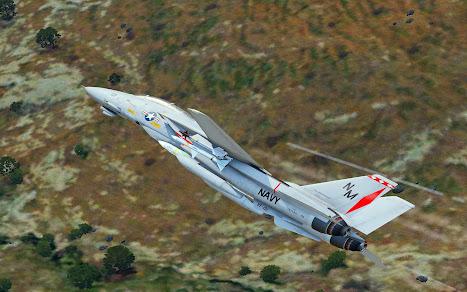Arma3用F-14 Tomcat MODのVF-191 Satan's Kittens