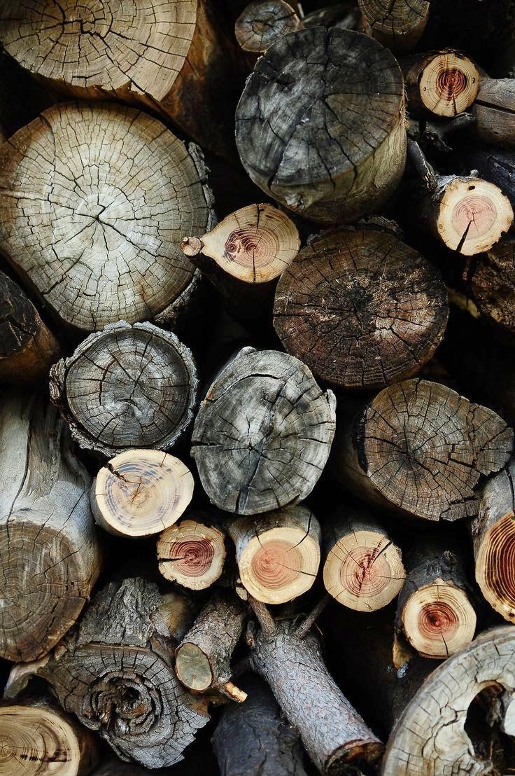 Ideas para almacenar la madera: Leñeros.