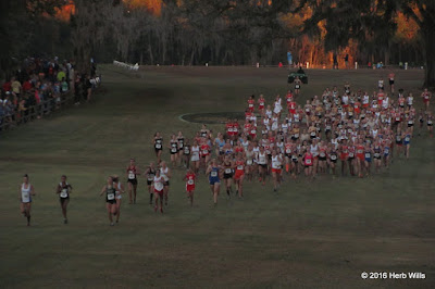 FHSAA 2A Girls' Cross Country Championship